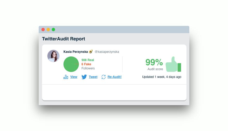 twitter-audit-report