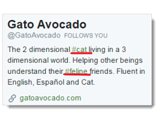 twitter bio with hashtags
