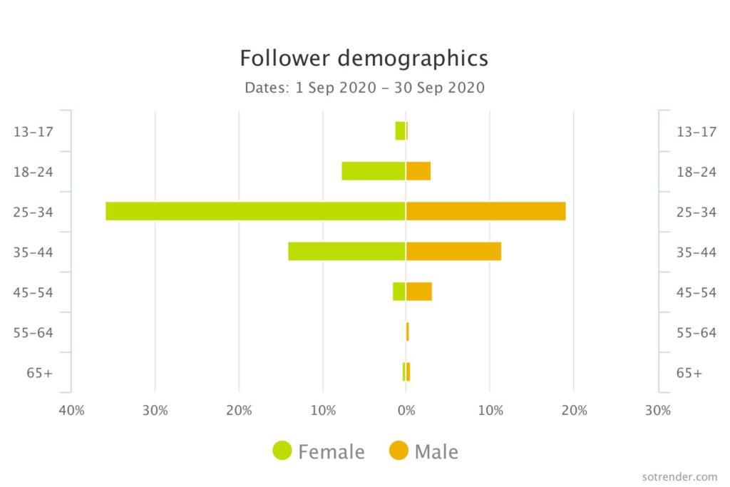 Instagram follower demographics